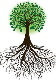 Επαγγελματική εκπαίδευση και κατάρτιση για ενίσχυση της ενεργειακής μετάβασης και της πράσινης οικονομίας