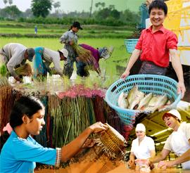 Οι προτάσεις του Φόρουμ Κοινωνικής Επιχειρηματικότητας για το νομοσχέδιο για αγροτικούς συνεταιρισμούς