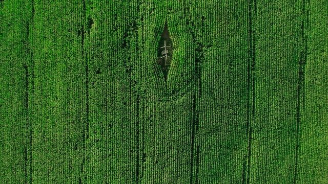 #12 Green Deal Πόσο πράσινο είναι το Σχέδιο Ανάκαμψης και Ανθεκτικότητας;