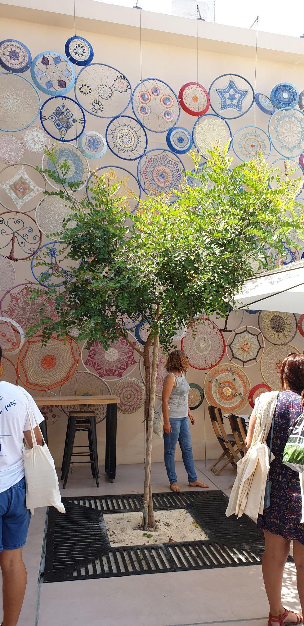 Supporting Employability Through Social Entrepreneurship in Cyprus